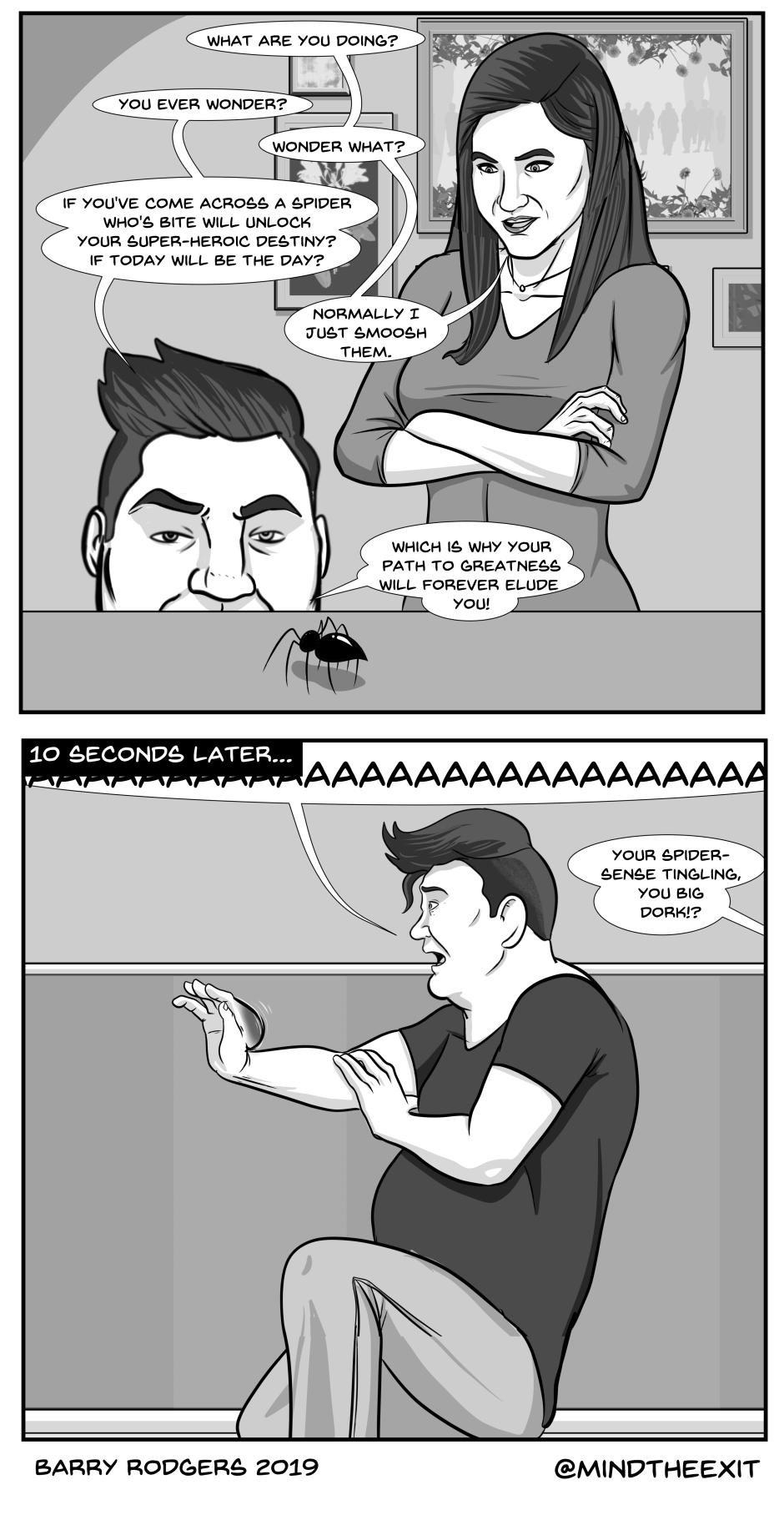 spider question1